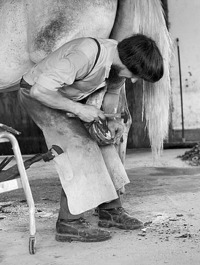 Amish_farrier