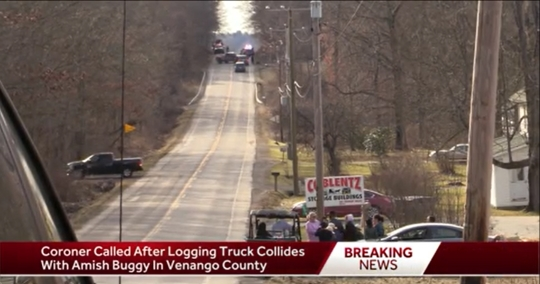 PA Amish Woman, Child Killed In Logging Truck Accident