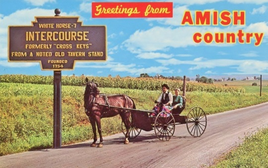 The 4 Northeastern States With An Amish Population (2018)