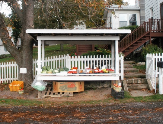white-picket-fence-stand