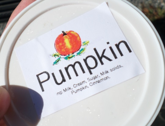 wholesome-country-creamery-pumpkin-ice-cream