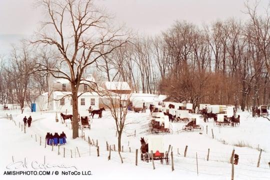 Winter Amish Wedding Bill Coleman