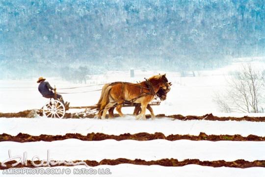 Winter Plowing