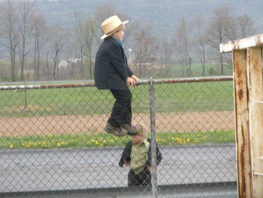 young-amish-boy-on-fence