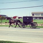 Earl D. Miller Ordered To Repay $5.2 Million, Mostly To Amish Investors