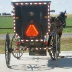 The Amish at Arthur, Illinois (10 Photos)