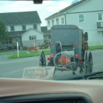 Amish Family With Special Needs Children To Get State Funds For Custom Buggy