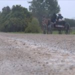 Michigan County Pushes State For Mandatory Buggy Licensing, Reflectors, Rubber Horseshoes