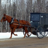 Amish in Maine