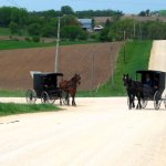 Amish Farms Of Branch County Michigan