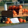The Amish and Halloween