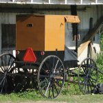 New York Amish: Book giveaway and interview with Karen Johnson-Weiner