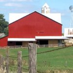 Ohio Amish Teen Hit In Head By Possible Stray Bullet