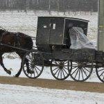 Amish Recliner