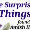 5 Surprising Items Found in Amish Homes