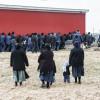 250 Amish Move A Barn (Video)