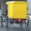 4 Unusual Amish Buggy Styles