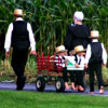 Another look at the Amish and health insurance