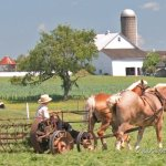 A First Visit to Amish Pennsylvania (23 Photos)