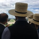 8 Amish Stories You Might Have Missed