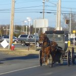 Delaware Amish Hit Yet Again By Whooping Cough