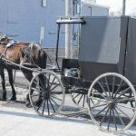 Nearly 300 Amish Vaccinated Against Hepatitis A Outbreak