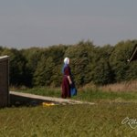 The Amish at Andover, Ohio (15 Photos)