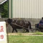 Whooping Cough Outbreak Strikes Missouri Amish Community