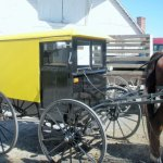 Visiting The Amish of Big Valley – Part 1: The Belleville Market & Auction