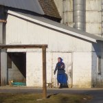 The Dover, Delaware Amish settlement