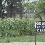 The Amish In Manitoba (14 Photos)