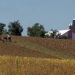 Pigeon Hunter Identified As Possible Shooter Of Amish Teen