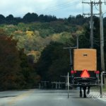A Visit to the Amish of New Wilmington, PA (19 Photos)