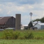 Amish Boys Find Homicide Victim In Michigan Woods