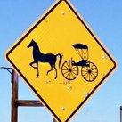 Top 10 Amish Population States