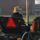 Kentucky Amish Buggy Accident