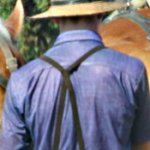 Should Amish horses wear reflectors?