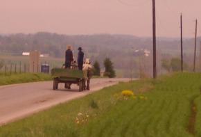 Amish wagon in Wayne County, Ohio