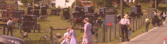 amish auction lancaster