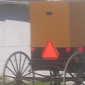 amish buggy colors