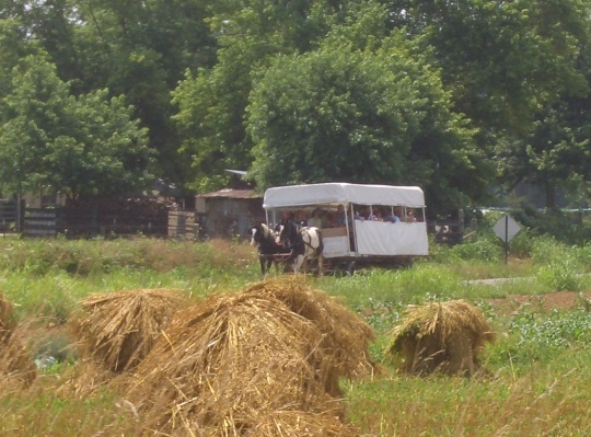 amish tourism