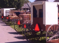 nebraska amish buggy smv triangle