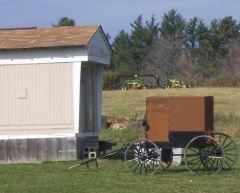 new york amish buggy