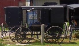swartzentruber amish buggies