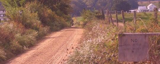 swartzentruber farm lane
