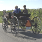 swiss amish carriage