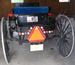 swiss amish youth carriage