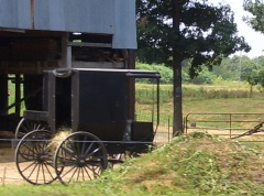 tennessee amish buggy