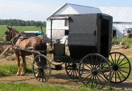 new york swartzentruber amish buggy