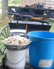 ny amish potato chips